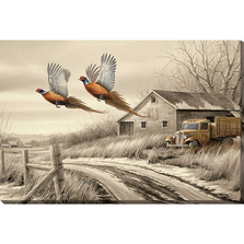 Pheasant Wrapped Canvas Wall Art | Weathered Memories | Wild Wings | F593853419