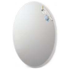 Parrot Shine Wall Mirror | Lladro | 01007861