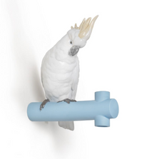 Parrot Hang Porcelain Hanger | Lladro | 01007853