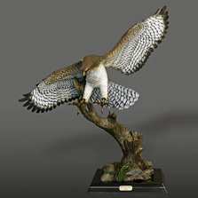 Red Tailed Hawk Bronze Sculpture  | Barry Stein | BBSREDTAILEDHAWK-2