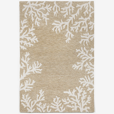 Coral Border Neutral Area Rug | Trans Ocean | CAP46162012