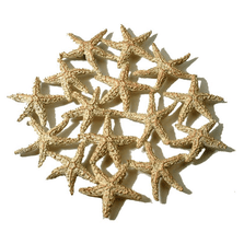 Starfish Pewter Trivet | Michael Michaud Table Art | TR9703GS