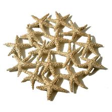 Starfish Pewter Trivet | Michael Michaud Table Art | TR9703GS