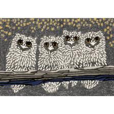 Owl Night Area Rug | Trans Ocean | TOGFTP34144347
