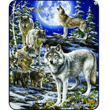 Wolf Faux-Mink Blanket | The Spirit of the Pack | DB5427-2