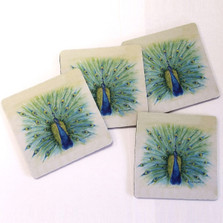 Peacock Coasters Set of 4 | Betsy Drake