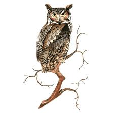 Bovano Great Horned Owl on Branch Enameled Copper Wall Art | W8091