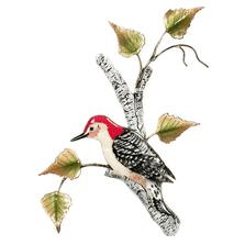 Bovano Red-bellied Woodpecker on Birch Enameled Copper Wall Art | W4151
