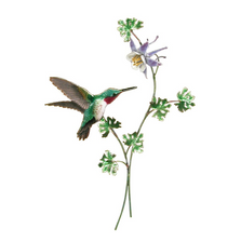 Bovano Broad-Tailed Hummingbird with Columbine Flower Wall Art | H1