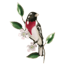 Bovano Rose-breasted Grosbeak on Apple Blossom Wall Art | W4116