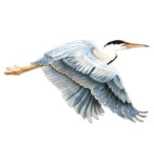 Bovano Flying Single Heron - Large 2 piece Wall Art