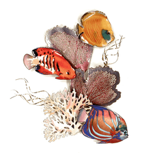 Bovano Blue Ring, Flame Angelfish, Golden Butterfly Fish Wall Art | W1648