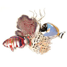 Bovano Surgeon & Tuskfish, Sea fan & Coral Enameled Copper Wall Art | W1647
