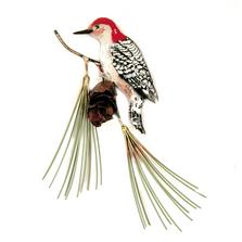 Bovano Red-Bellied Woodpecker on Jumbo Pine Enameled Copper Wall Art | W544