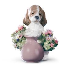 "Dog Porcelain Figurine ""Take  Me Home"" | Lladro | 01006574"