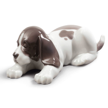 "Dog Porcelain Figurine ""Sleepy Puppy"" | Lladro | 01009134"