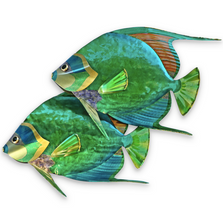 Queen Angelfish Pair Metal Wall Sculpture | TI Design | CO139