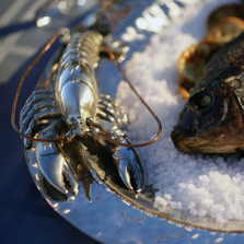 Lobster Hammered Steel Tray | Vagabond House | O811LL