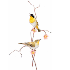 Bovano Yellow Throated Warbler Pair Bird Wall Art | W4461