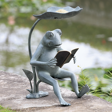 Reading Frog Bird Feeder | SPI Home | 34937