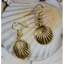 Scallop Shell Antique Gold Brass Wire Earrings | Elaine Coyne Jewelry | ECGOCG485E