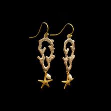 Coral Reef Wire Earrings   Michael Michaud   3547BZ