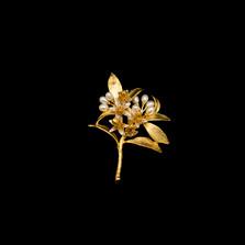 Orange Blossom Pearl and Gold Pin | Michael Michaud | 5776V | Nature Jewelry