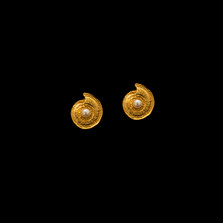 Nautilus Shell Gold & Pearl Post Earrings | Michael Michaud | RD416V | Nature Jewelry
