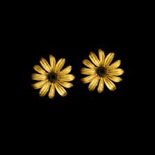 Black-Eyed Susan Post Earrings   Michael Michaud   3565BZ   Nature Jewelry