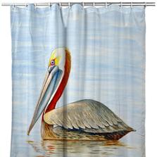 "Pelican Shower Curtain ""Summer Pelican"" | BDSH807"