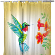Dick's Hummingbird Shower Curtain | BDSH1093