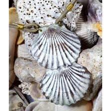 Scallop Shell White Chocolate Brass Necklace | Elaine Coyne Jewelry | ECGOCW11PD