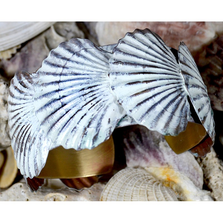 Scallop Shell White Chocolate Brass Cuff Bracelet | Elaine Coyne Jewelry | ECGOCW11BC