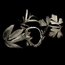 Herb Pewter Napkin Rings Set of 4  | Michael Michaud Table Art | TAnr9354ap