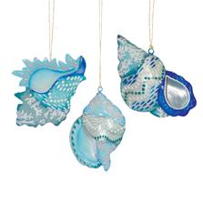 Bondi Beach Seashell Orn A/3   ORN73358