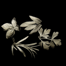 Italian Silver Herb Napkin Rings Set of 4    Michael Michaud Table Art   TAnr9394ap