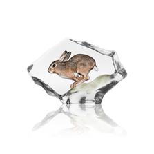 Hare Crystal Sculpture | 34299 | Mats Jonasson Maleras