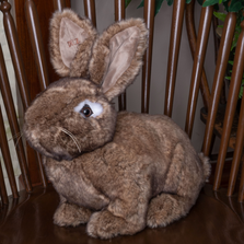 Natural Brown Stuffed Rabbit Hug Bunny | Ditz Designs | DIT40561