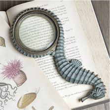 Seahorse Magnifier | 35016 | SPI Home
