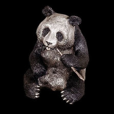 Panda Bear Silver Plated Sculpture | 7503 | D'Argenta