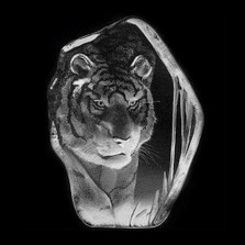 Large Tiger Crystal Sculpture | 33378 | Mats Jonasson Maleras
