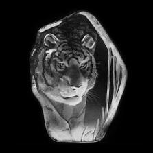 Large Tiger Crystal Sculpture | 33378 | Mats Jonasson Maleras