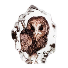 Owl Mini Color Crystal Sculpture | 88177 | Mats Jonasson Maleras
