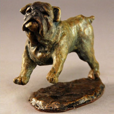 Bulldog Bronze Sculpture | Mark Hopkins | MHS72052