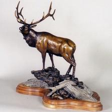 "Elk Bronze Sculpture ""Sir Royal""   Scott Lennard   SLB02"