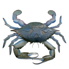 Blue Crab Wall Sculpture | TI Design | CA797
