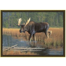 Moose Area Rug | Custom Printed Rugs | CPR39