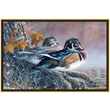 Wood Duck Area Rug | Custom Printed Rugs | CPR47