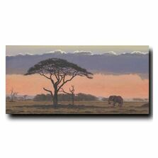 African Sunset Print | Gary Johnson | GJgcas
