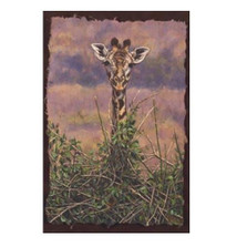 "Giraffe Print ""View from the Top"" 
